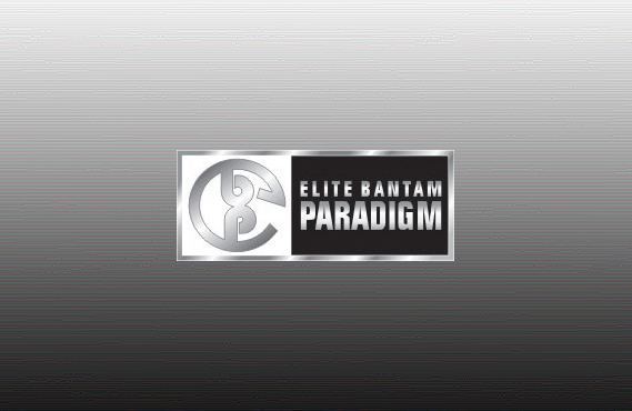 Logo Design for Elite Bantam Paradigm